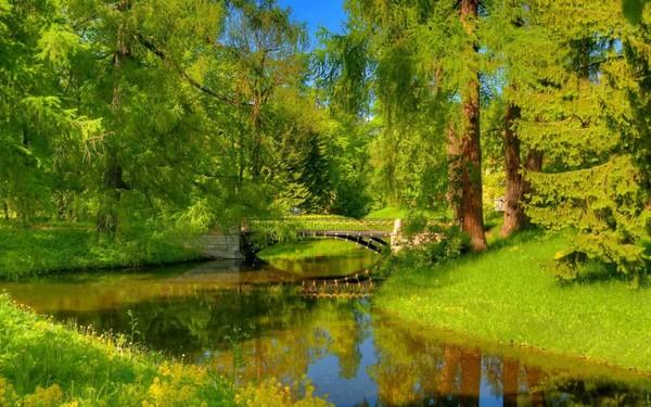 Yeni Harika Doğa Manzara resimleri, doğa manzarası resimleri